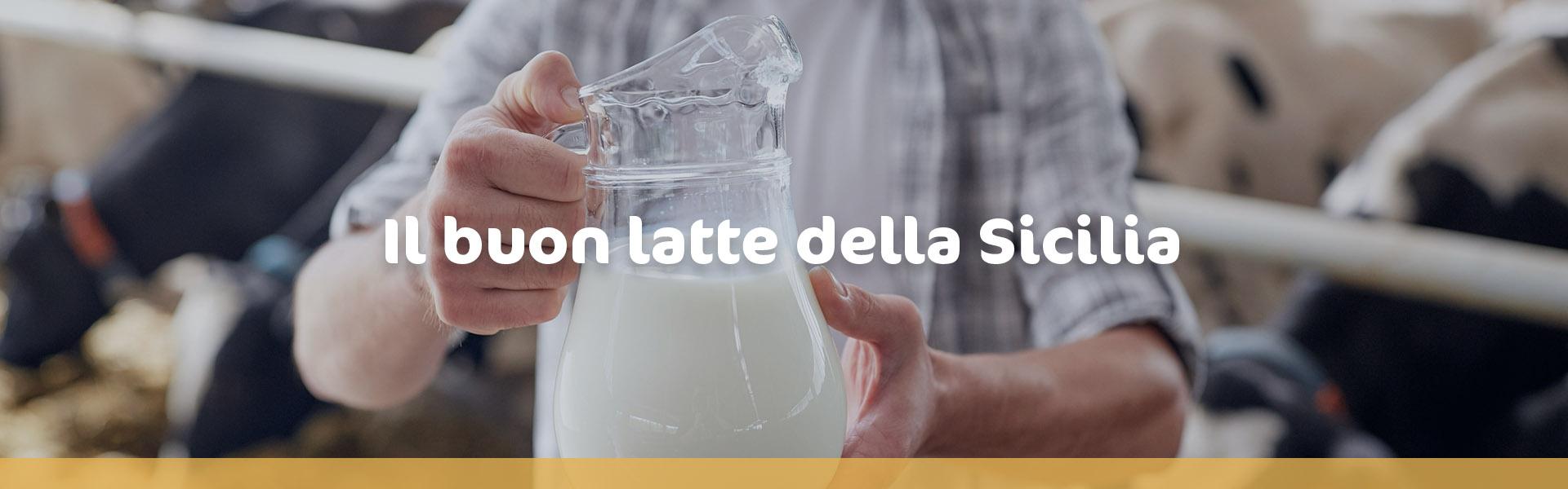 Il buon latte della Sicilia